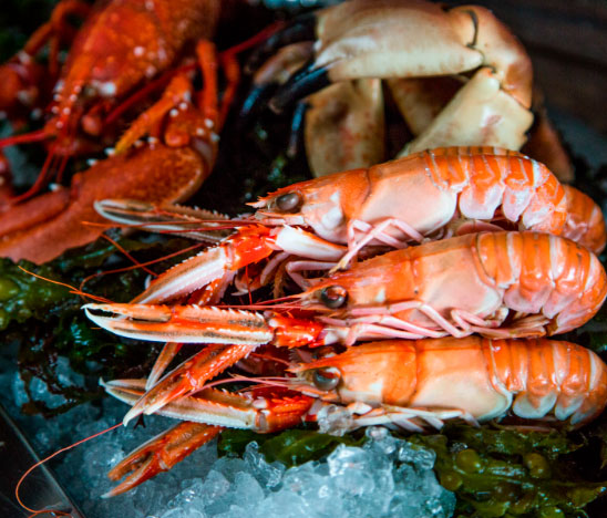 Quality Ingredients, Langoustine, Crab and Lobster Platter